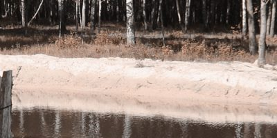 Укрепление берега озера